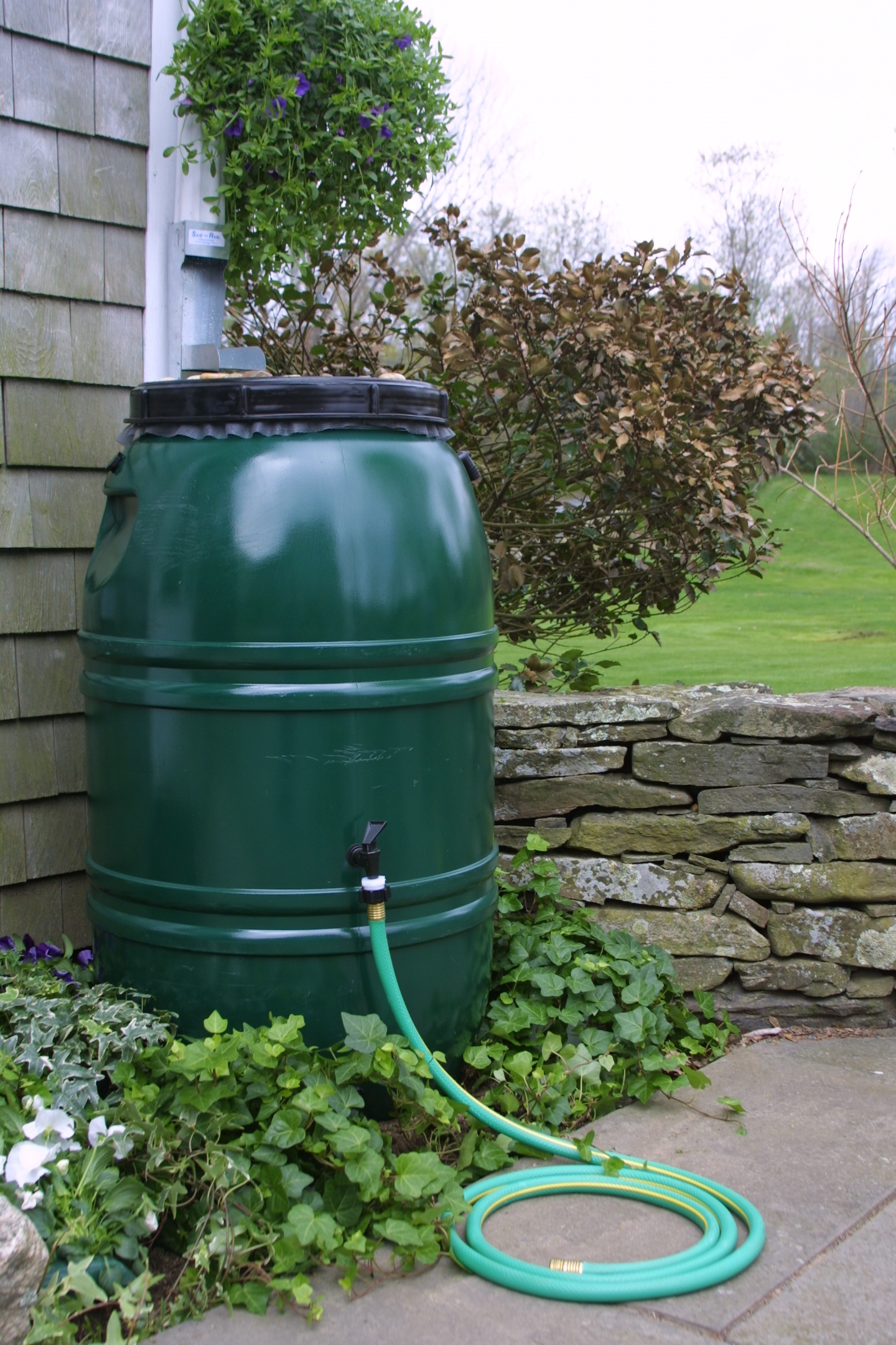 Rainwater Harvesting Workshop June 8th